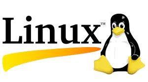 LINUX X11 Protocol - رایانه