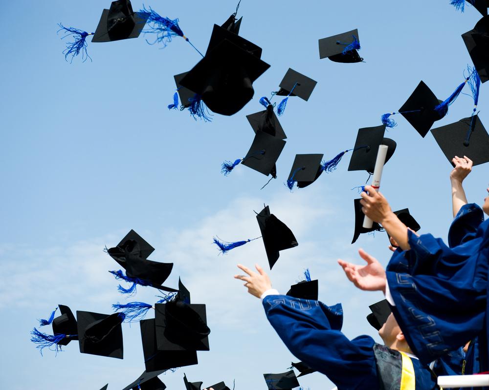 دانشگاه ها و مراکز عالی-رایان اندیشه مایا